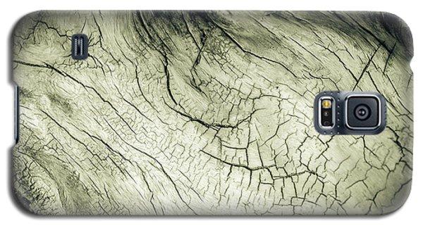 Elephant Wood Of Memory Galaxy S5 Case