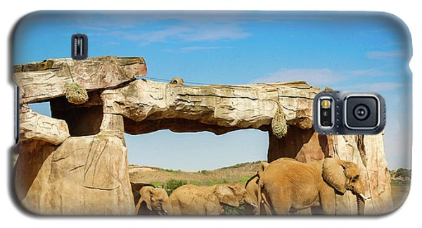 Elephants Galaxy S5 Case