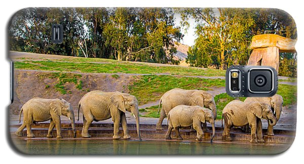 Elephants Are Family Galaxy S5 Case by April Reppucci