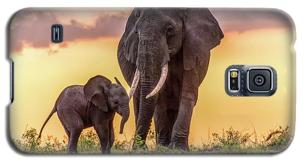 Elephants At Sunset Galaxy S5 Case by Janis Knight