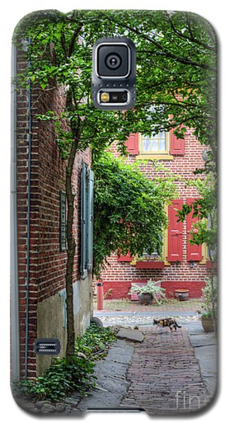 Calico Alley  Galaxy S5 Case by David Zanzinger
