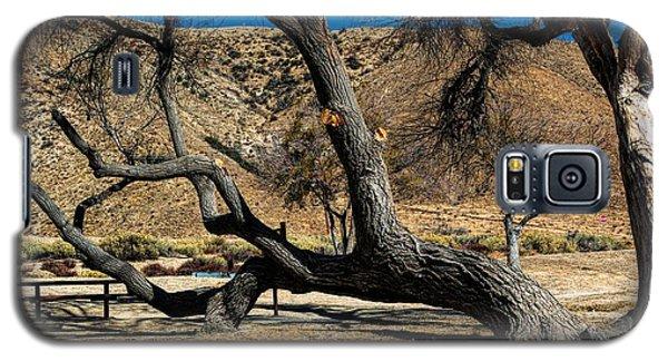 Elizabeth Lake Tree Galaxy S5 Case