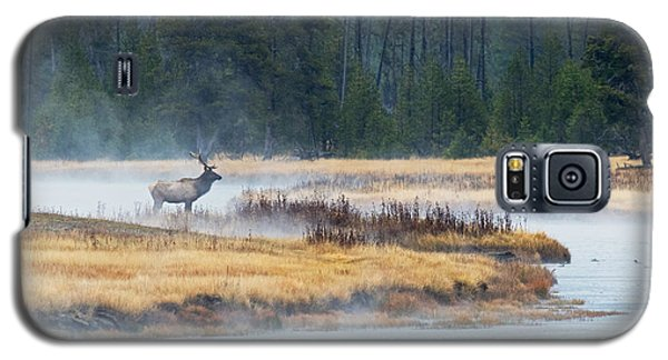 Elk Crossing Galaxy S5 Case
