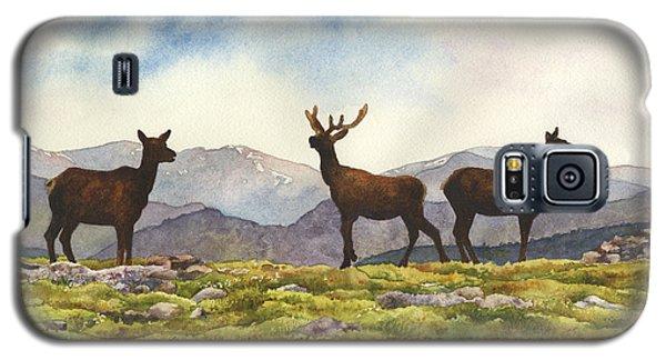 Elk In The Evening Galaxy S5 Case