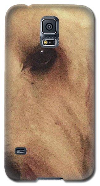 Elleye Galaxy S5 Case