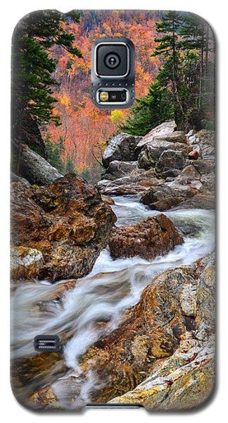 Ellis River Autumn View Galaxy S5 Case