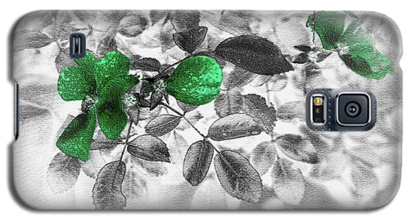Emerald Green Of Ireland Galaxy S5 Case