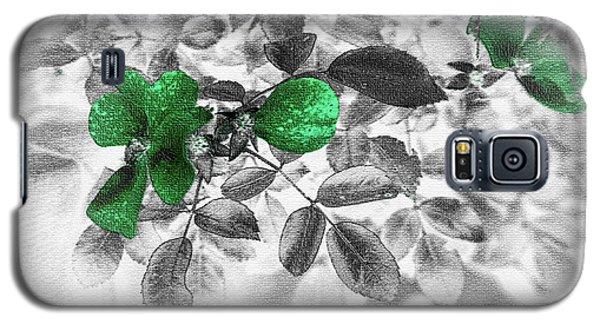 Emerald Green Of Ireland Galaxy S5 Case
