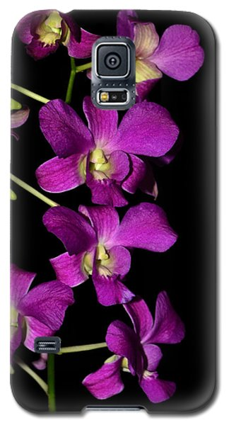Galaxy S5 Case featuring the photograph Emma Queen Orchid 001 by George Bostian