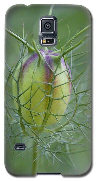Encased Galaxy S5 Case