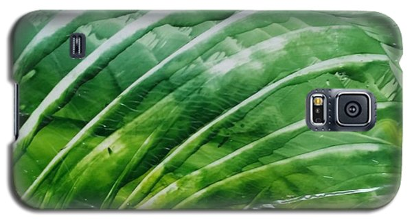Encaustic Abstract Green Fan Foliage Galaxy S5 Case