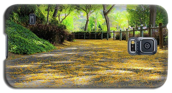 Enchanted Path Galaxy S5 Case