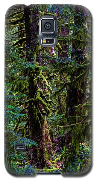 Enchanted Galaxy S5 Case by Alana Thrower