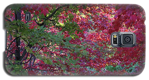 Enchanted Forest Galaxy S5 Case by Doris Potter