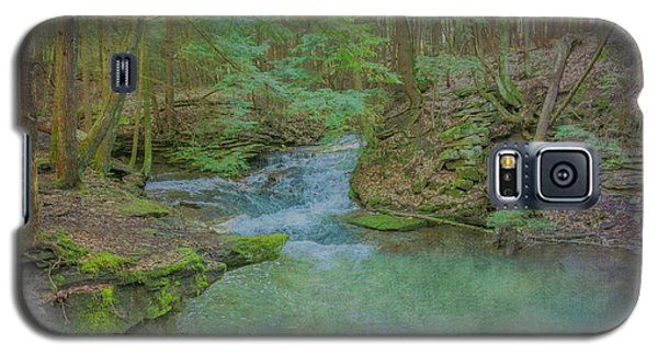 Galaxy S5 Case featuring the digital art Enchanted Forest One by Randy Steele