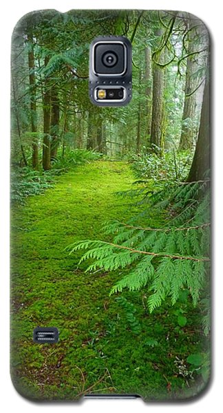 Enchanted Forest Galaxy S5 Case by Patricia Strand