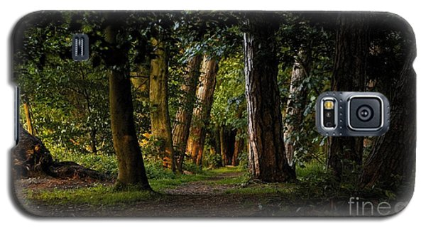 Enchanted  Galaxy S5 Case by Gary Bridger