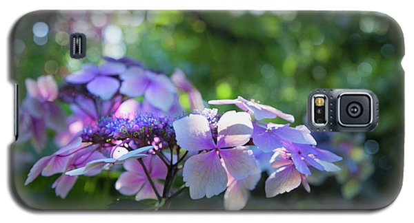 Enchanted Hydrangea Galaxy S5 Case by Theresa Tahara