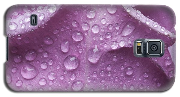Galaxy S5 Case featuring the photograph Enchanted by Michelle Wiarda