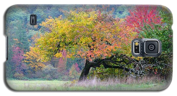 Enchanted Park Galaxy S5 Case