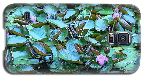 Painted Water Lilies Galaxy S5 Case by Theresa Tahara