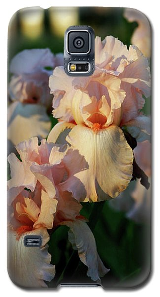 End Of Day Pink Irises 6702 H_2 Galaxy S5 Case