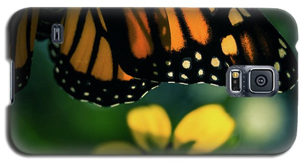 End Of Summer Monarch Galaxy S5 Case