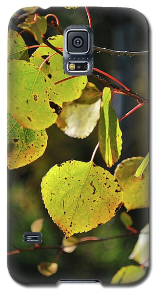 End Of Summer Galaxy S5 Case