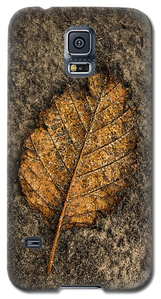End Of The Year Galaxy S5 Case