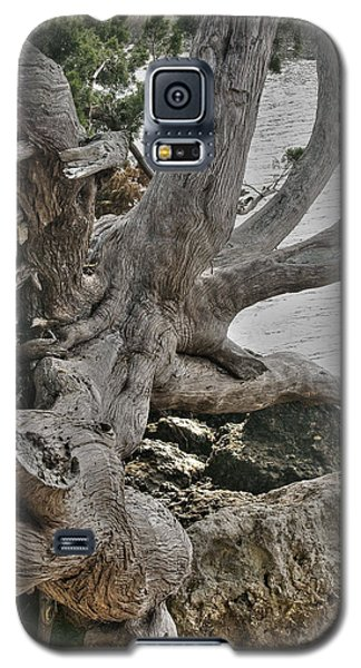 Endure Galaxy S5 Case by Rebecca Hiatt