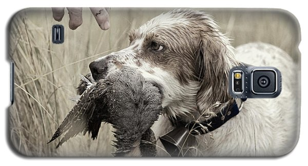 English Setter And Hungarian Partridge - D003092a Galaxy S5 Case