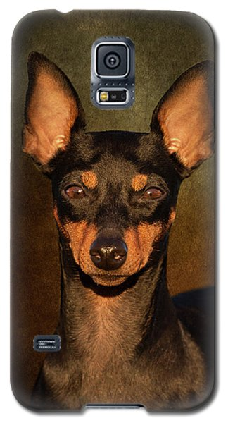 English Toy Terrier Galaxy S5 Case