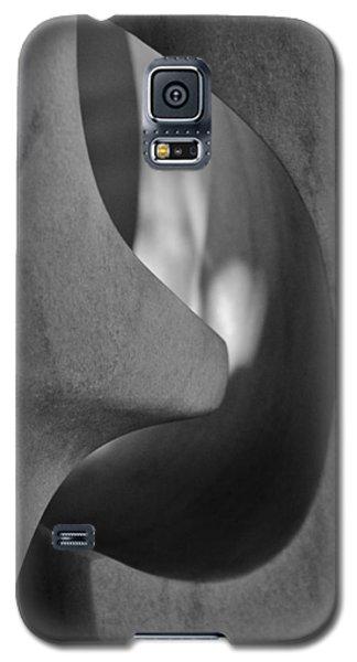 Enter Galaxy S5 Case