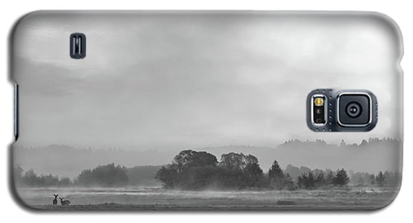 Epic Haze Galaxy S5 Case