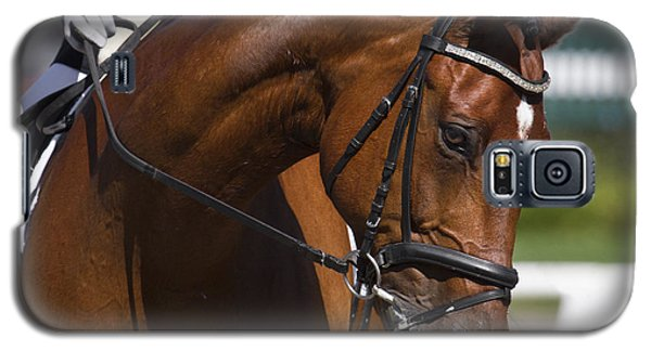 Equestrian At Work Galaxy S5 Case by Wes and Dotty Weber