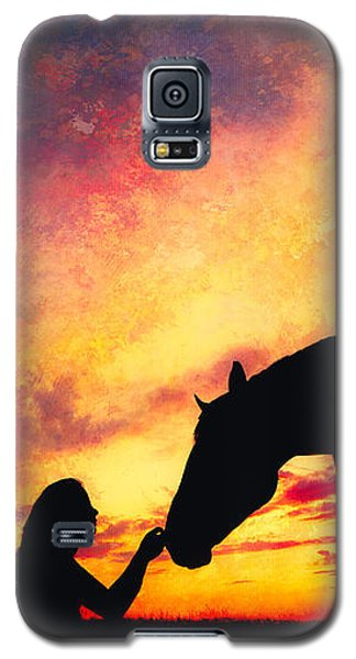 Equine Sunset Galaxy S5 Case by Debi Bishop