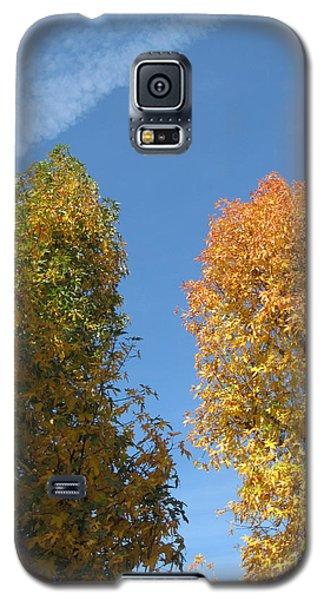 Equinox Galaxy S5 Case