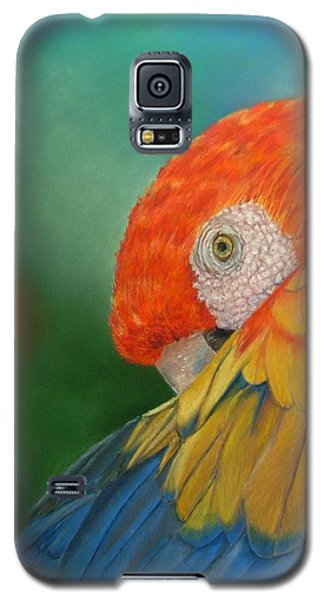 Galaxy S5 Case featuring the painting Escondida by Ceci Watson