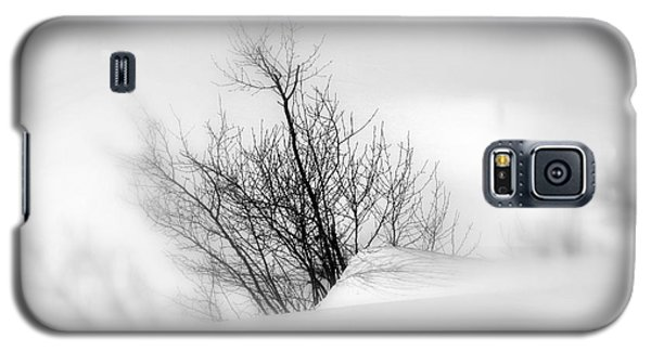 Galaxy S5 Case featuring the photograph Essence Of Winter by Elfriede Fulda