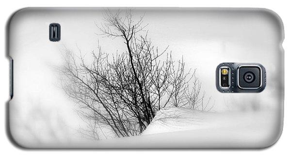 Essence Of Winter Galaxy S5 Case