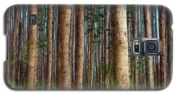 Eucalyptus Forest Galaxy S5 Case