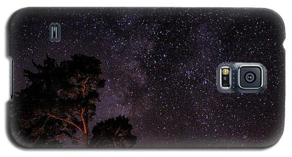 Eucalyptus Galaxy Galaxy S5 Case