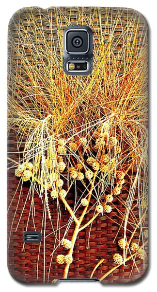 Eucalyptus Red Galaxy S5 Case