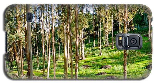 Eucalyptus Galaxy S5 Case