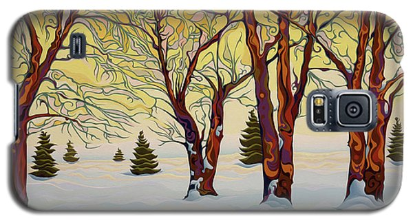 Euphoric Treequility Galaxy S5 Case