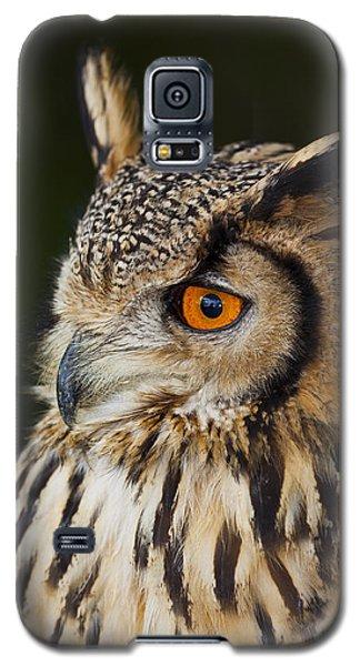 Eurasian Eagle-owl Bubo Bubo Galaxy S5 Case by Gabor Pozsgai
