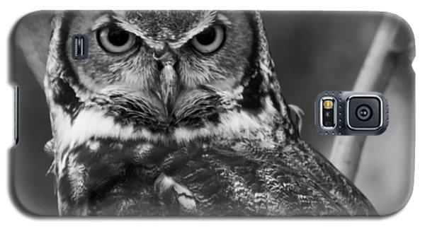 Eurasian Eagle Owl Monochrome Galaxy S5 Case