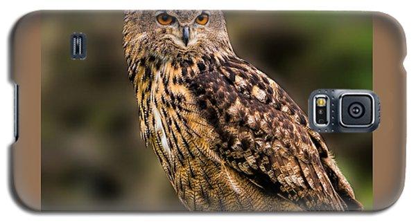 Eurasian Eagle Owl With A Cowboy Hat Galaxy S5 Case