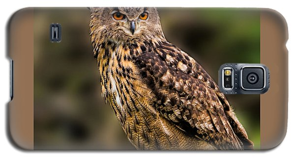 Eurasian Eagle Owl With A Cowboy Hat Galaxy S5 Case by Les Palenik