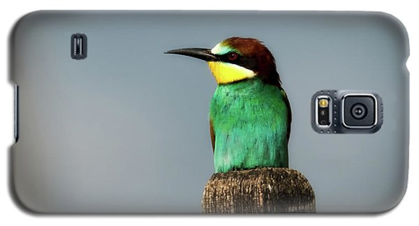 Galaxy S5 Case featuring the photograph European Bee Eater by Wolfgang Vogt